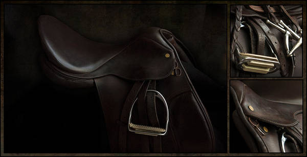 Saddle Triptych Poster