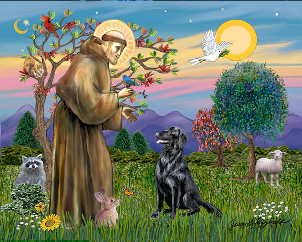 Saint Francis Blesses A Flat Coated Retriever Poster