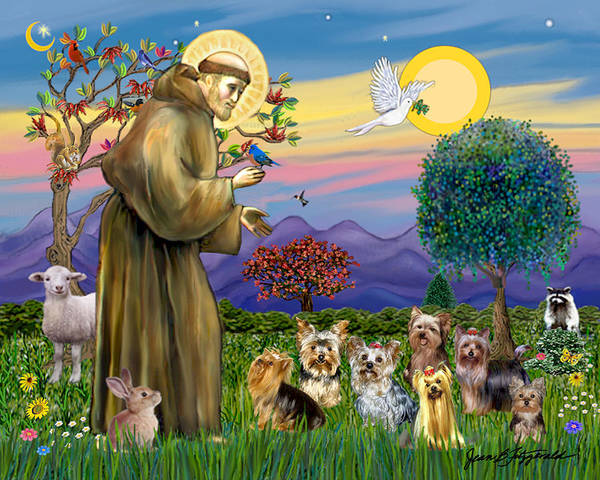 Saint Francis Blesses Seven Yorkies Poster