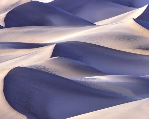 Poster featuring the photograph San Dunes Abstract by Gigi Ebert