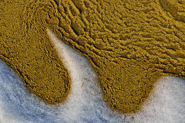 Sand Abstract Poster