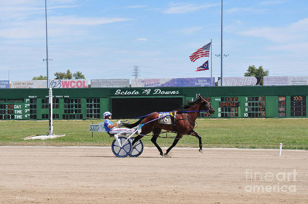 D3w-206 Scioto Downs Photo Poster