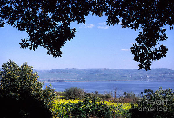 Sea Of Galilee From Mount Of The Beatitudes Poster