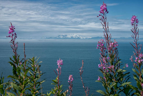 Poster featuring the photograph Sea Views by Darlene Bushue