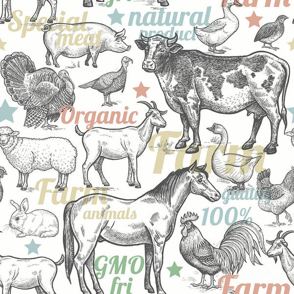 Seamless Pattern With Livestock Poster