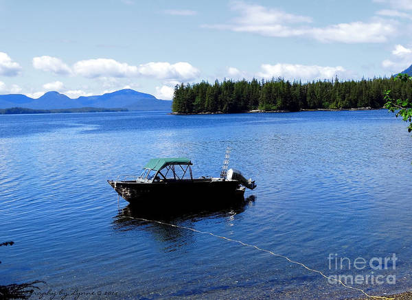 Serenity Outside Of Ketchikan Ak Poster