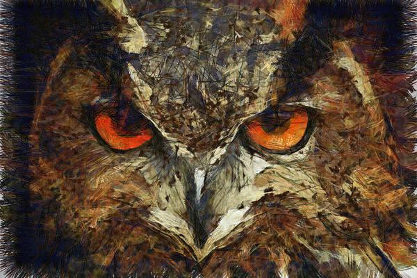 Sharpie Owl Poster