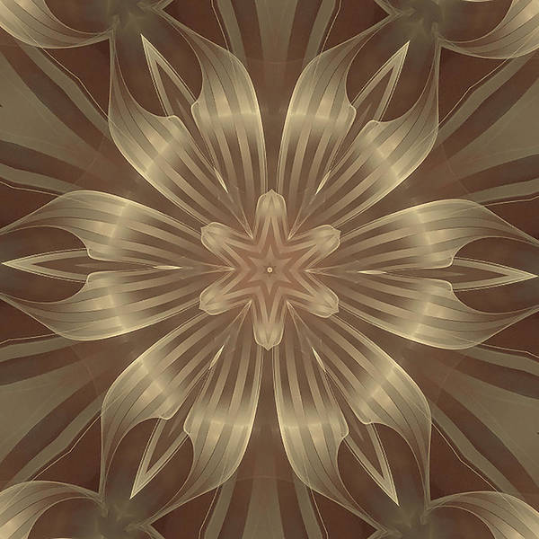 Sheer Linen Poster