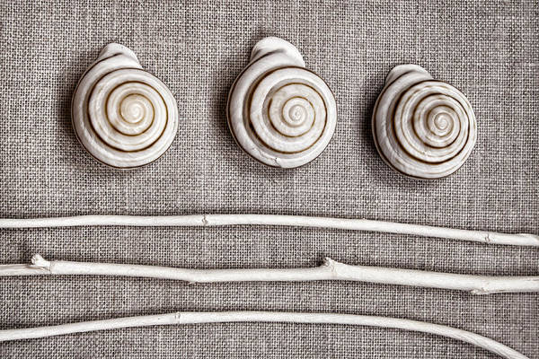 Shells And Sticks Poster