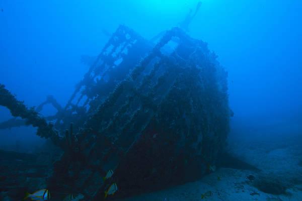 Shipwreck On Govenors River Walk Poster