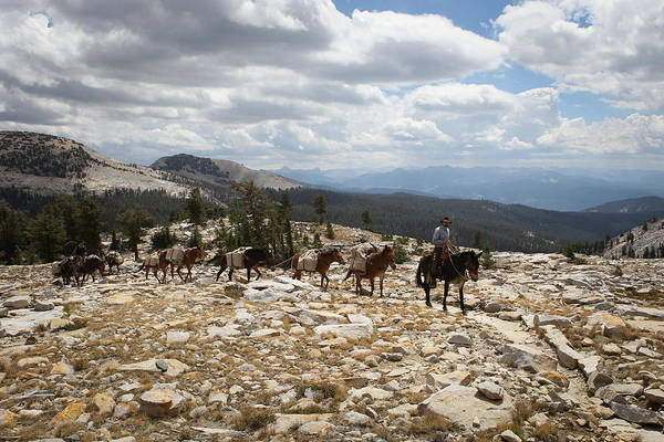 Sierra Trail Poster