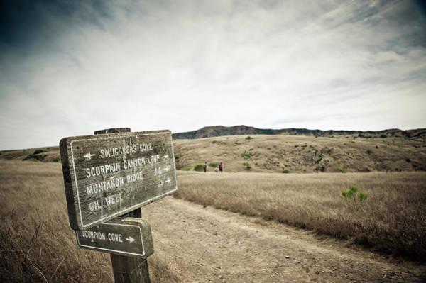 Signs For Hikers On Santa Cruz Island Poster