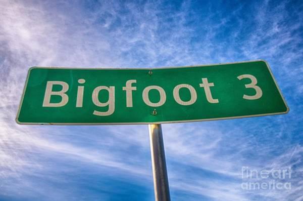 Signs Of Bigfoot Poster