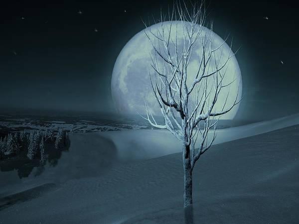 Silent Winter Evening  Poster