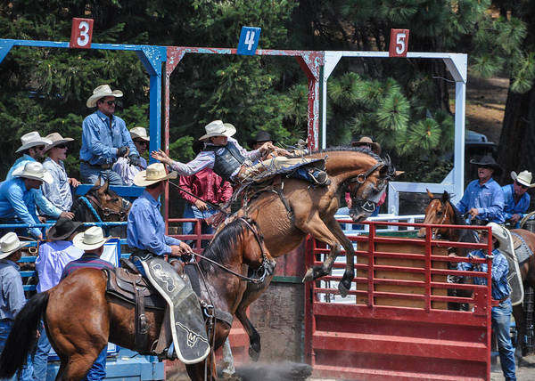 Silver Buckle Chute #4 Poster