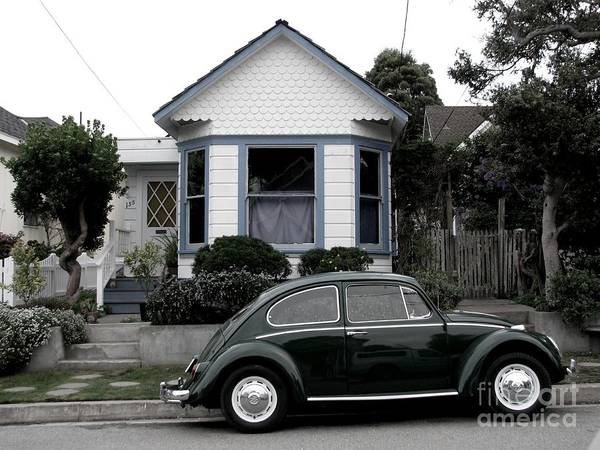 Small House With A Bug Poster