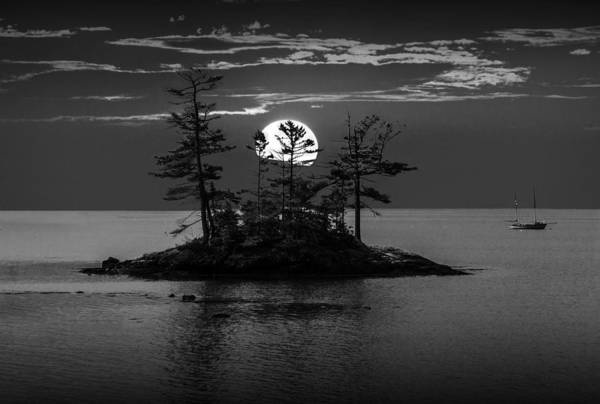 Small Island At Sunset In Black And White Poster