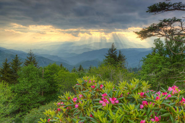 Spring Sunset - Great Smoky Mountains Poster