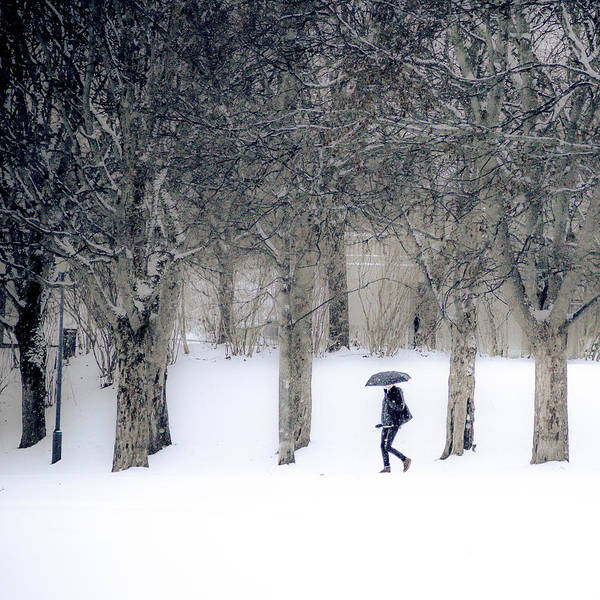Woman With Umbrella Walking In Park Covered With Snow Poster