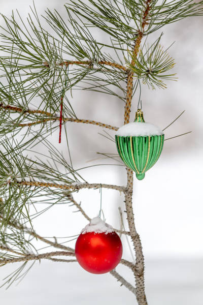 Snow Covered Christmas Ornaments Poster