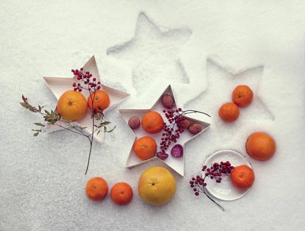 Snow Still Life Poster