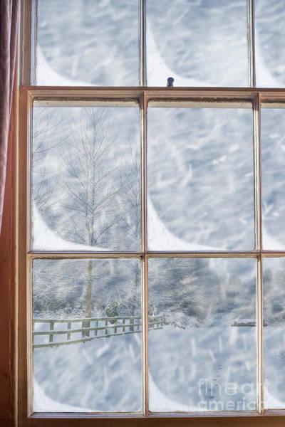 Snowy Window Poster