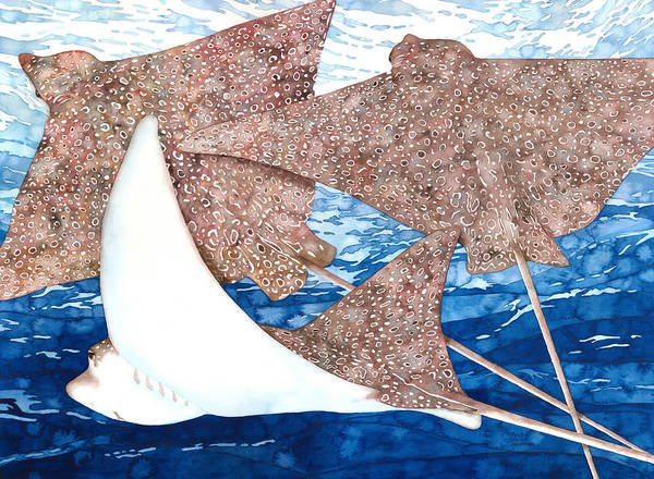 Soaring Eagle Rays Poster