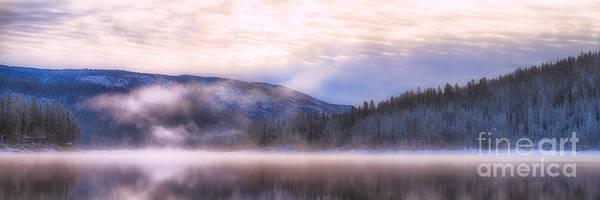 Soft Light Of Winter Poster