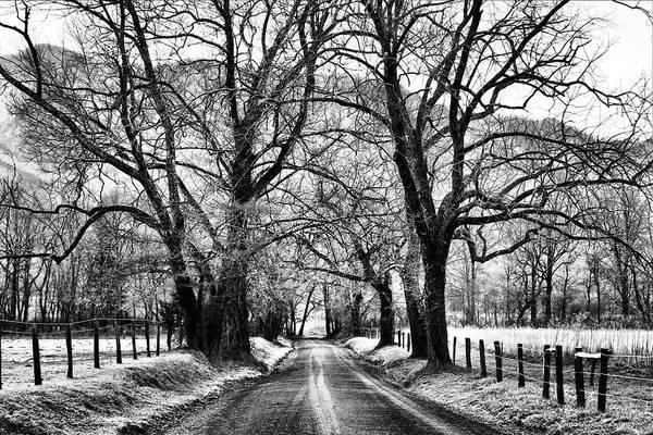 Sparks Lane During Winter Poster