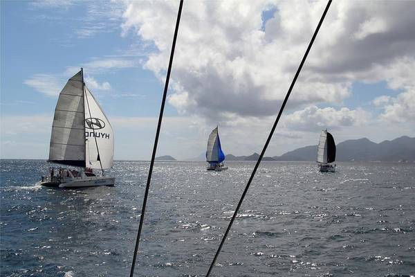 Poster featuring the photograph Spinnakers In The Seychelles by Debbie Cundy