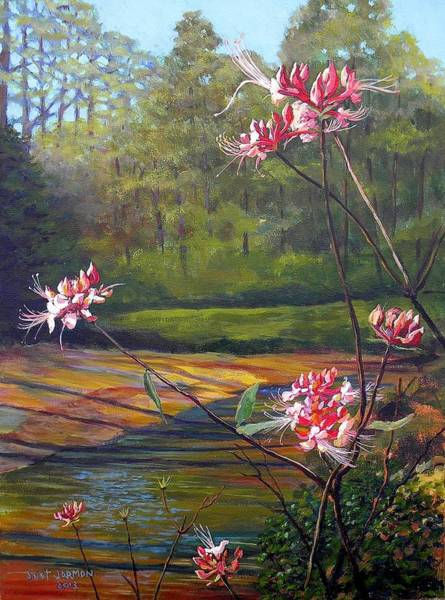 Spring Blooms On The Natchez Trace Poster