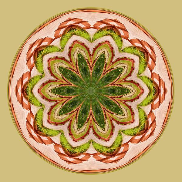 Spring Grasses Mandala Poster