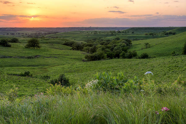 Spring In The Flint Hills Poster