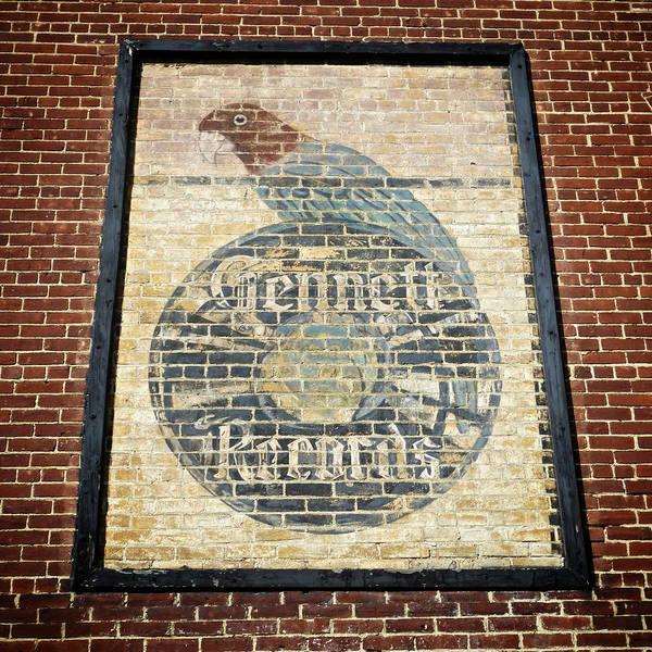 Starr-gennett's Parrot Poster