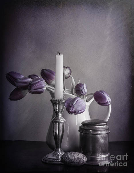 Still Life Study In Purple Poster