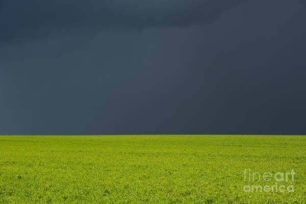 Storm Field Abstract Poster