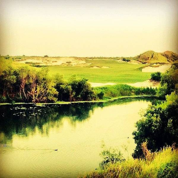 Streamsong #golf #iphone5 #instagram Poster