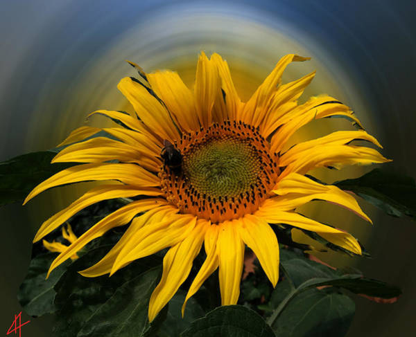 Poster featuring the photograph Sun Flower Summer 2014 by Colette V Hera  Guggenheim