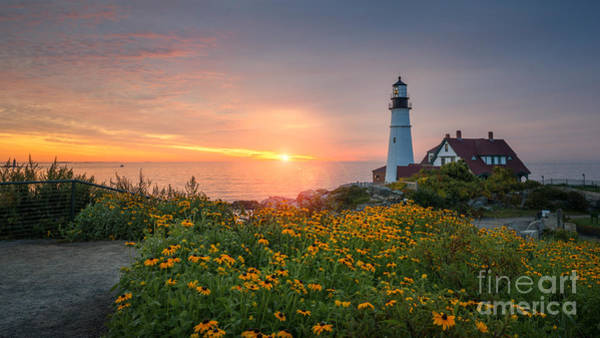Sunrise Bliss At Portland Lighthouse Poster