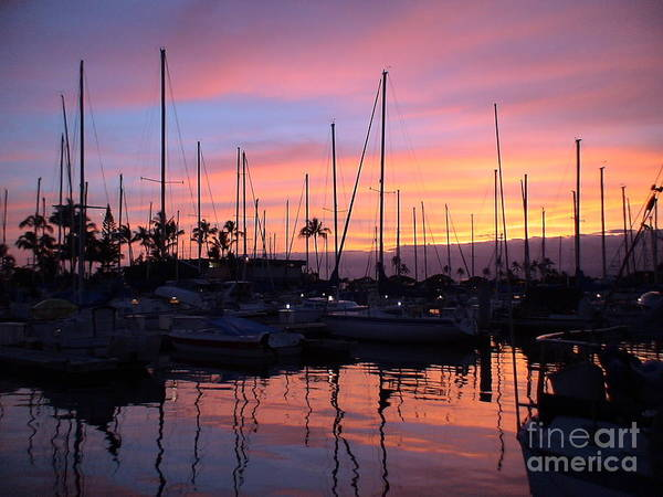 Sunset In The Ala Wai Poster