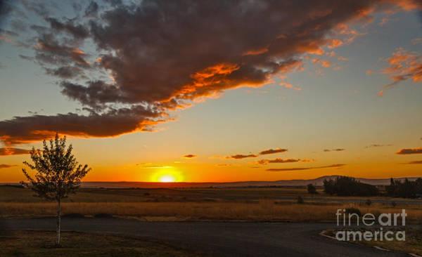 Sunset Over Camas Prairie  Poster