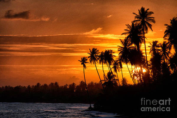 Sunset Salinas Puerto Rico Poster