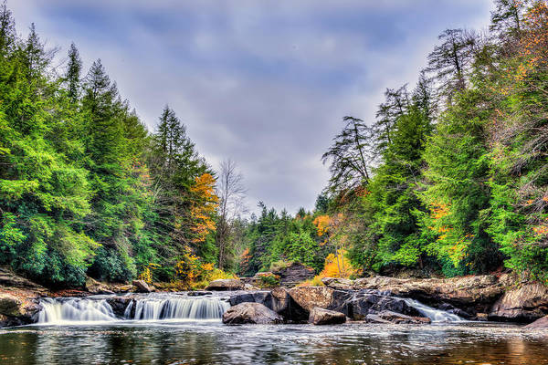 Swallow Falls Waterfall In Appalachian Mountains In Autumn Poster