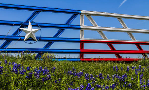 Texas Flag Painted Gate With Blue Bonnets Poster