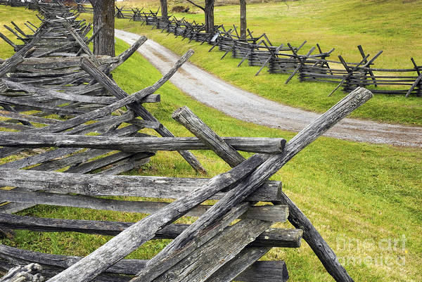 The Bloody Lane At Antietam Poster