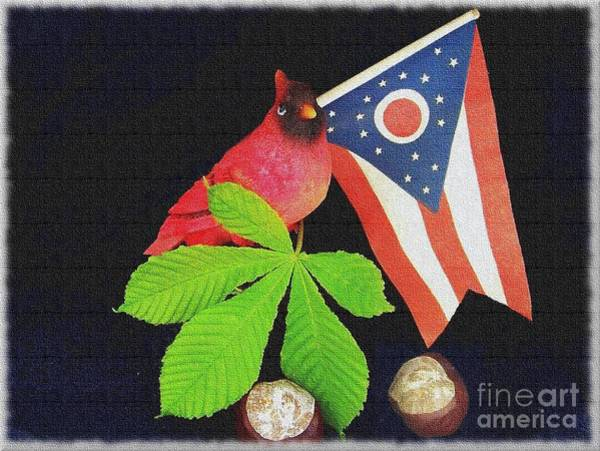 The Buckeye State Poster