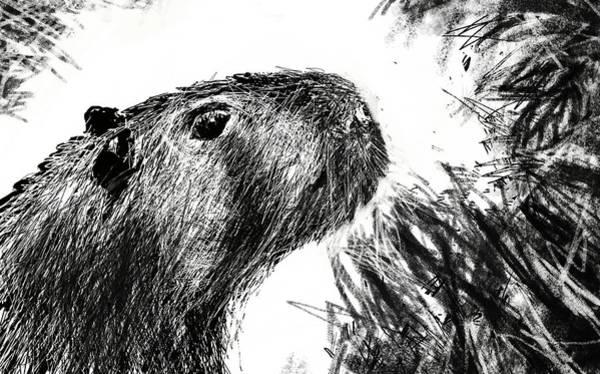 The Capybara  Poster
