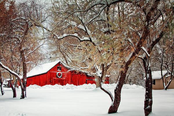 The Christmas Barn Poster