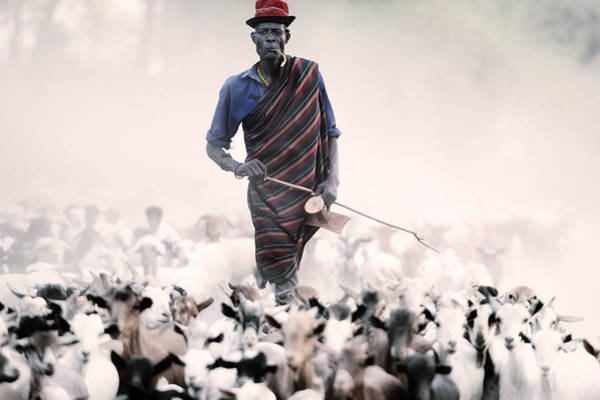 The Herder Poster