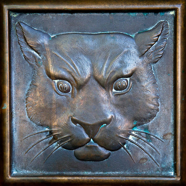 The Original Todd Hall Cougar Door Pulls - Washington State University Poster